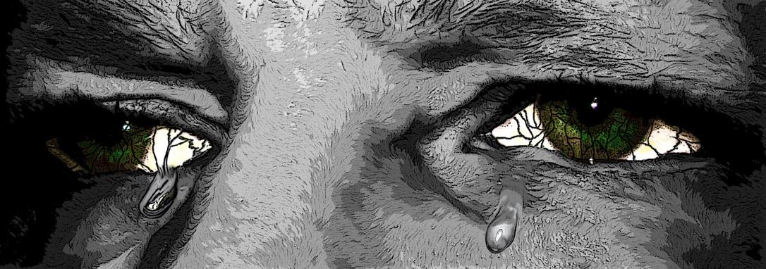 eyes-795647_1920.jpg