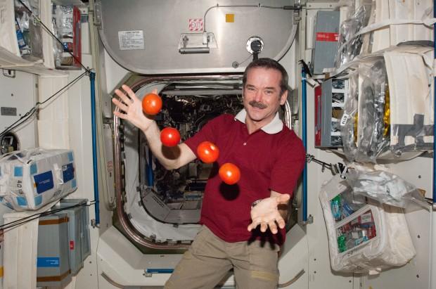 ISS-34_Chris_Hadfield_juggles_some_tomatoes
